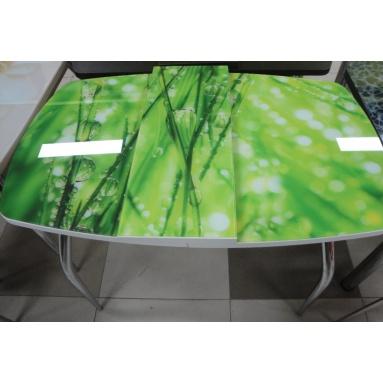 Стол раздвижной стеклянный СО-8 (фотопечать Роса)